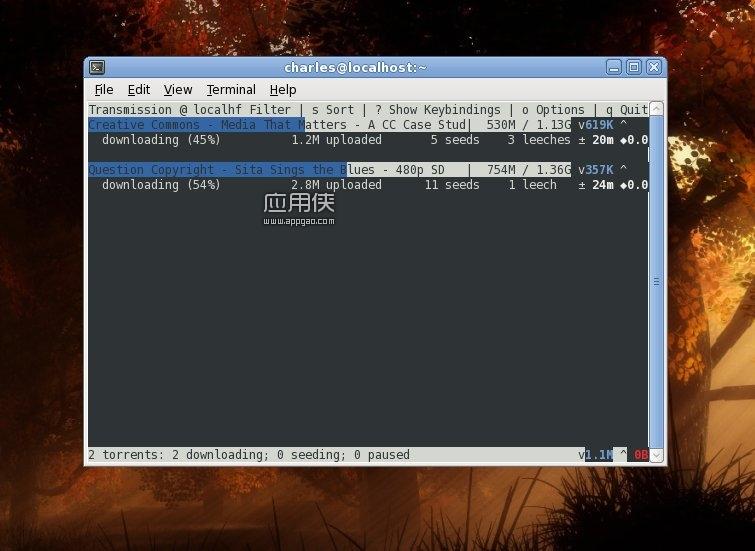 transmission - 免费的 BitTorrent 下载工具